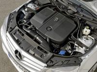 Топливо для автомобильных двигателей: что лучше выбрать - дизель или бензин