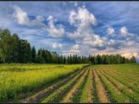 О рекультивации нарушенных земель